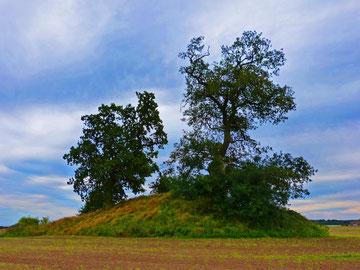 """Hügelgrab bei Garz: Der """"Himmel"""" von Silmenitz"""