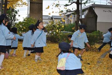 イチョウの葉がたくさん落ちています。