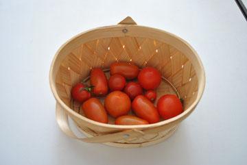いろいろな品種のトマトがあります。