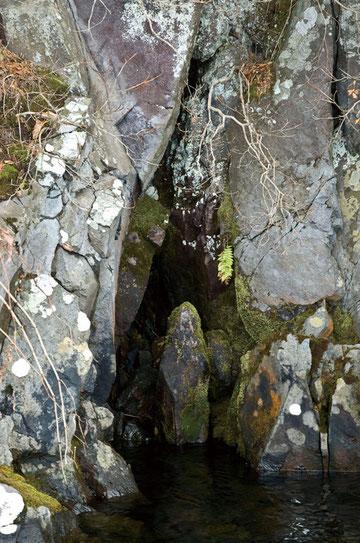 南祖坊の石像(御室の洞穴の隣りにある)