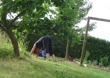 Auch als kleine Verschnaufpause für den Rücken bei der Gartenarbeit geeignet- der herabschauende Hund.