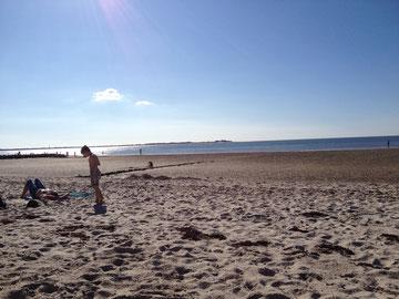 Strandurlaub mit Hund