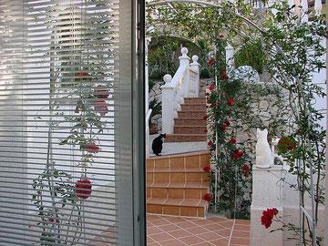 Blick aus dem Wohnzimmer, obere Etage