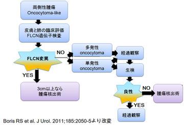 BHD腎の診療方針