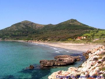 Coaequaddus beach