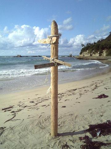 小浜海岸で