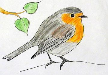 """In Plaußig hat sich auch die NAJU-Kindergruppe """"Parthefrösche"""" an der Vogelzählung beteiligt. Hinterher wurden die Vögel sehr schön aufgezeichnet. Foto: Karsten Peterlein"""