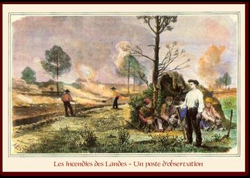 orthe, feu, foret, incendie, pignada, mirador, prevention, landes, aquitaine, etigny