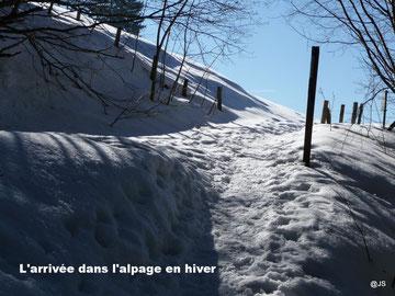 L'arrivée dans l'alpage en hiver