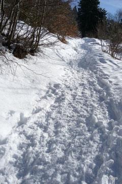 Le chemin en hiver