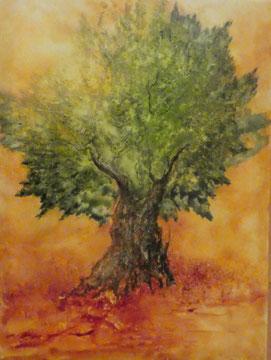 Olivenbaum Nr. 6, Aquarell auf Leinwand, 70x70, Beatrice Ganz, 2018