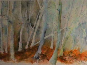 Wald, Aquarell auf Papier gerahmt, Beatrice Ganz