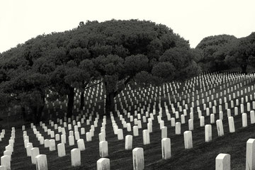 California (USA) - Fort Rosecrans National Cemetery - San Diego