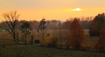 La campagna in autunno
