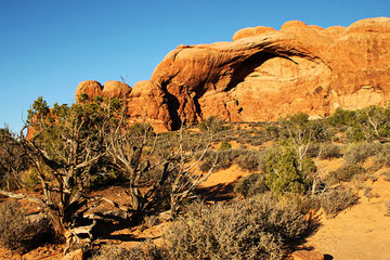 Utah (USA) - Arches National Park