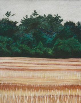 Chaumes le soir, pastel 40x30 Sylvie Berman artiste peintre