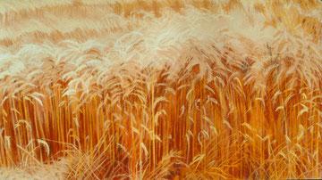 Blés à midi( 2), pastel 90x60 Sylvie Berman artiste peintre