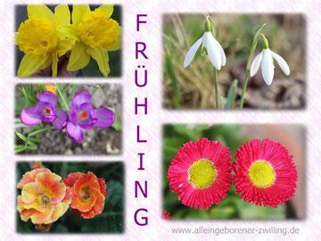 Frühling - März 2014