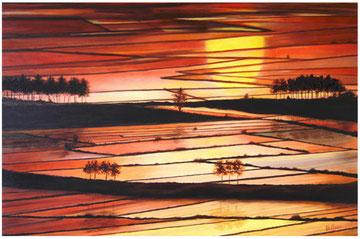 Sun-set on the rise fields   90x60  cm  2004
