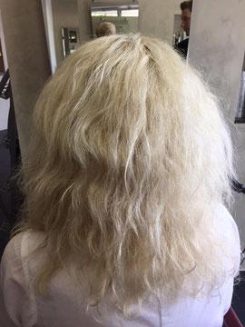 Vor der Anwendung. Naturkrauses Haar vom Ansatz bis Spitze