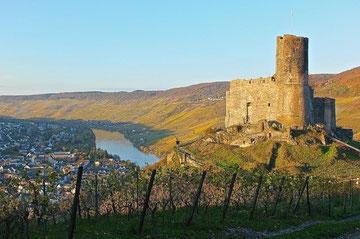 Blick von Burg Landshut