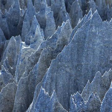 Tsingys