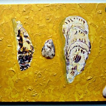 Muscheln im Sand