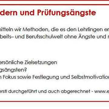 Laufende Kooperation FARO Consulting GmbH