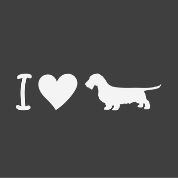 I love Dachshunds wirehaired