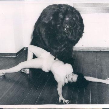 """refG59 - 19x24cm -  """"Beauty and the Beast, Richard de la Roche, Diana REVERE""""  Presse: tampon et article au dos -  1956 - 4/5"""