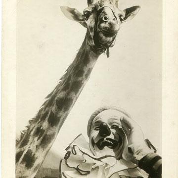 refG210 - 20x25,5cm  - cirque - Photo montée sur carton, tampon (from Roland Butler collection press agent) au dos -circa 1940 - 4/5
