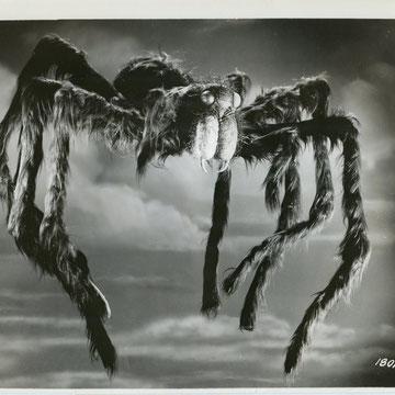 """refG47 - 19,x25,5cm - """"Tarantula""""- dos vierge -1955 - 4/5"""