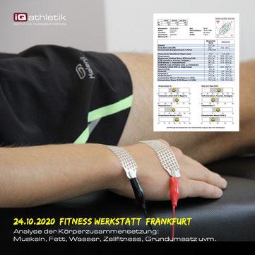 Analyse der Körperzusammensetzung in der Fitness Werkstatt Frankfurt