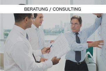 Beratung / Consulting