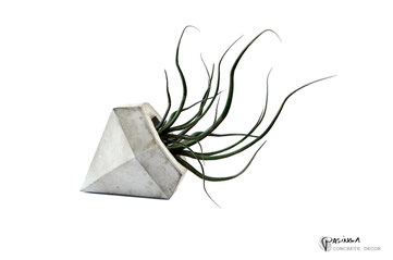 Concrete Diamond Planter by PASiNGA