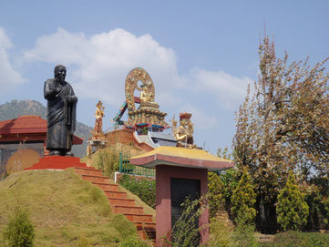 Thuksey Rinpoche. Ph. Drukpa Tahiti.