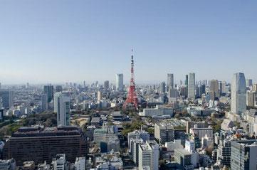 東京都  ホームページ作成格安屋