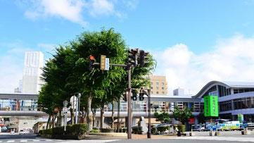 秋田県 ホームページ作成格安屋