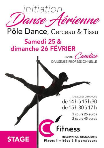 initiation danse aérienne: Pôle Dance, Cerceau et Tissu