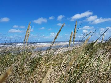 Spiekeroog - Nordsee - Nordseeküste - Strand - Ostfriesische Inseln