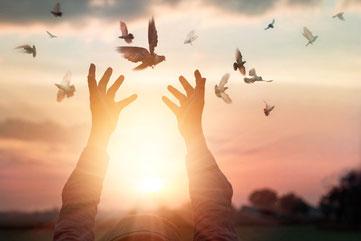 Freiheit durch Vergebung Ho'oponopono