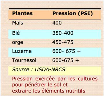 Pression du sol sur le profil racinaire de plantes - capteur compaction Agralis