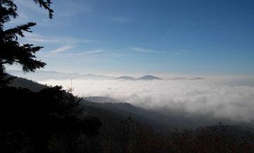 Auf dem Bernsteinfels über den Wolken