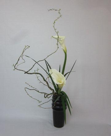 2014.3.17 瓶花        by Kumikoさん