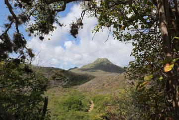Christoffel-Nationalpark, Curacao, Karibik, Karibische Inseln
