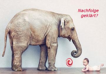 Nachfolge zukunftssicher gestalten - maco GmbH