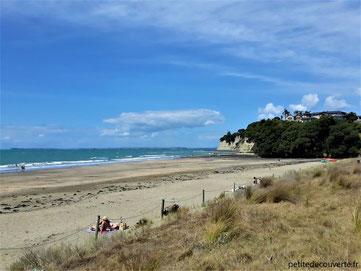 - Long bay Okura - Région d'Auckland - Nouvelle-Zélande -