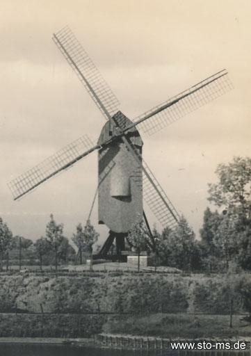 Die Pluggendorfer Mühle am Aasee