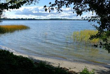 Plauer See vom Ufer des Naturcampingplatzes Zwei Seen | © www.zweiseen.de