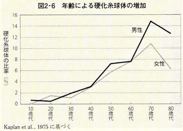年齢による硬化糸球体の増加